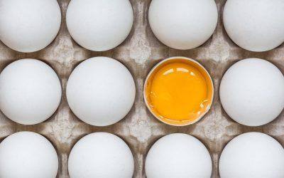 Tudi ti ločuješ rumenjak od beljaka zaradi bojazni pred holesterolom?